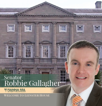 leinster house brochure.jpg