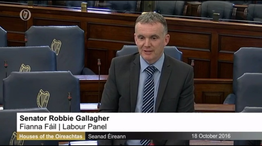 Senator Gallagher puts questions to Minister Zappone regarding Budget 2017